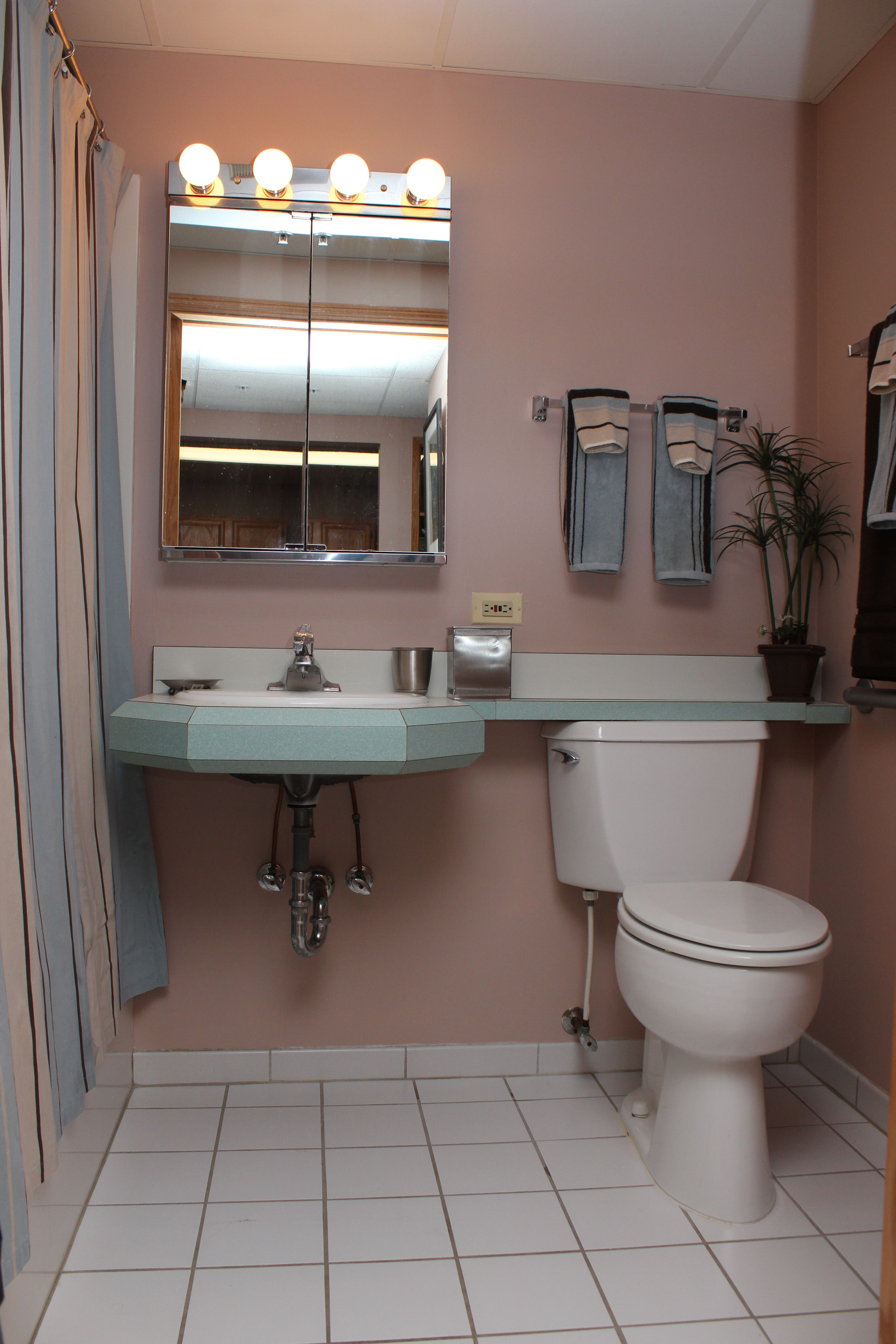 Bathroomada accessible fully equipped with grab bars raised