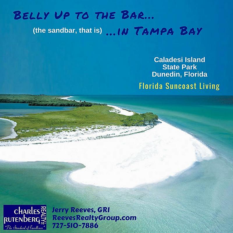 Caladesi Island Florida: #CaladesiIslandStatePark On The #Florida #Suncoast At