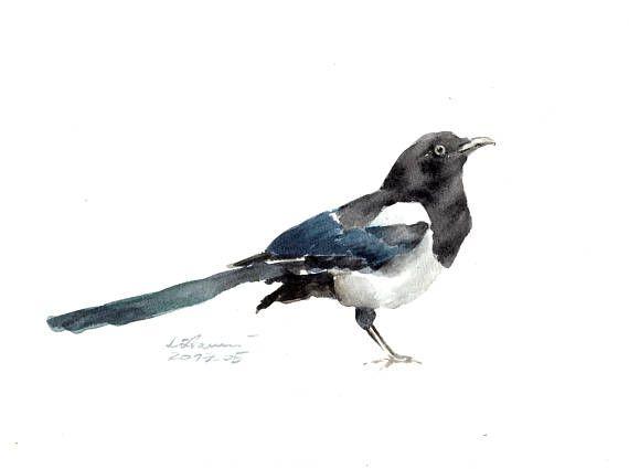 aquarelle originalepeinture magpie 18x24cmpeinture | Aquarelle, Peinture oiseau, Dessin