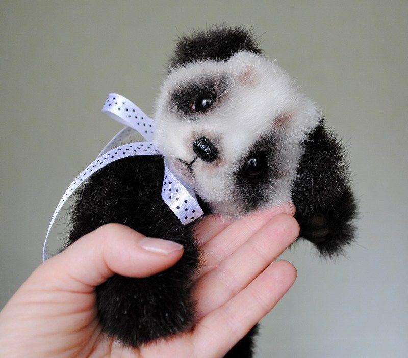 Osito peluche panda   Oso peluche, Osos y Oso blanco