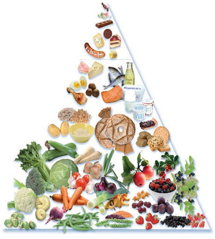Nordic Food Pyramid Nordic Diet Viking Diet Viking Food