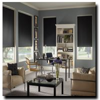 SolarVue Roller Shades Home Decorating Coolness