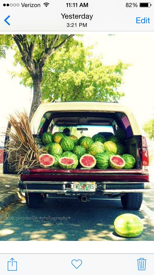 YUM 🍉 Summer watermelon, Watermelon, Summertime