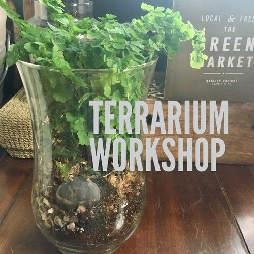 Join Mara from The Farm at Oxford & create your own Terrarium!  March 18, 2017 2:00 - 4:00pm $49 per person