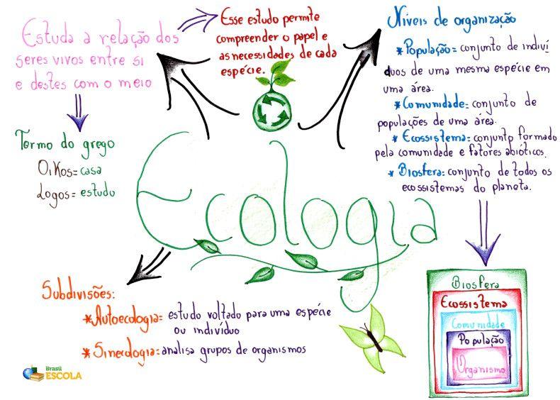 Ecologia Brasil Escola Mapas Mentais Mapa Mental Relacoes Ecologicas