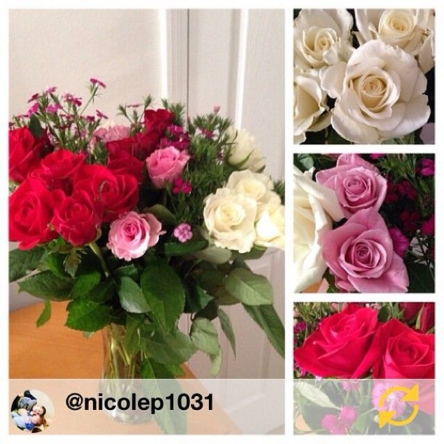 Shop All Full Selection Of Farm Fresh Flower Bouqs Thebouqs Com Roses Valentines Day Flowers Red Roses