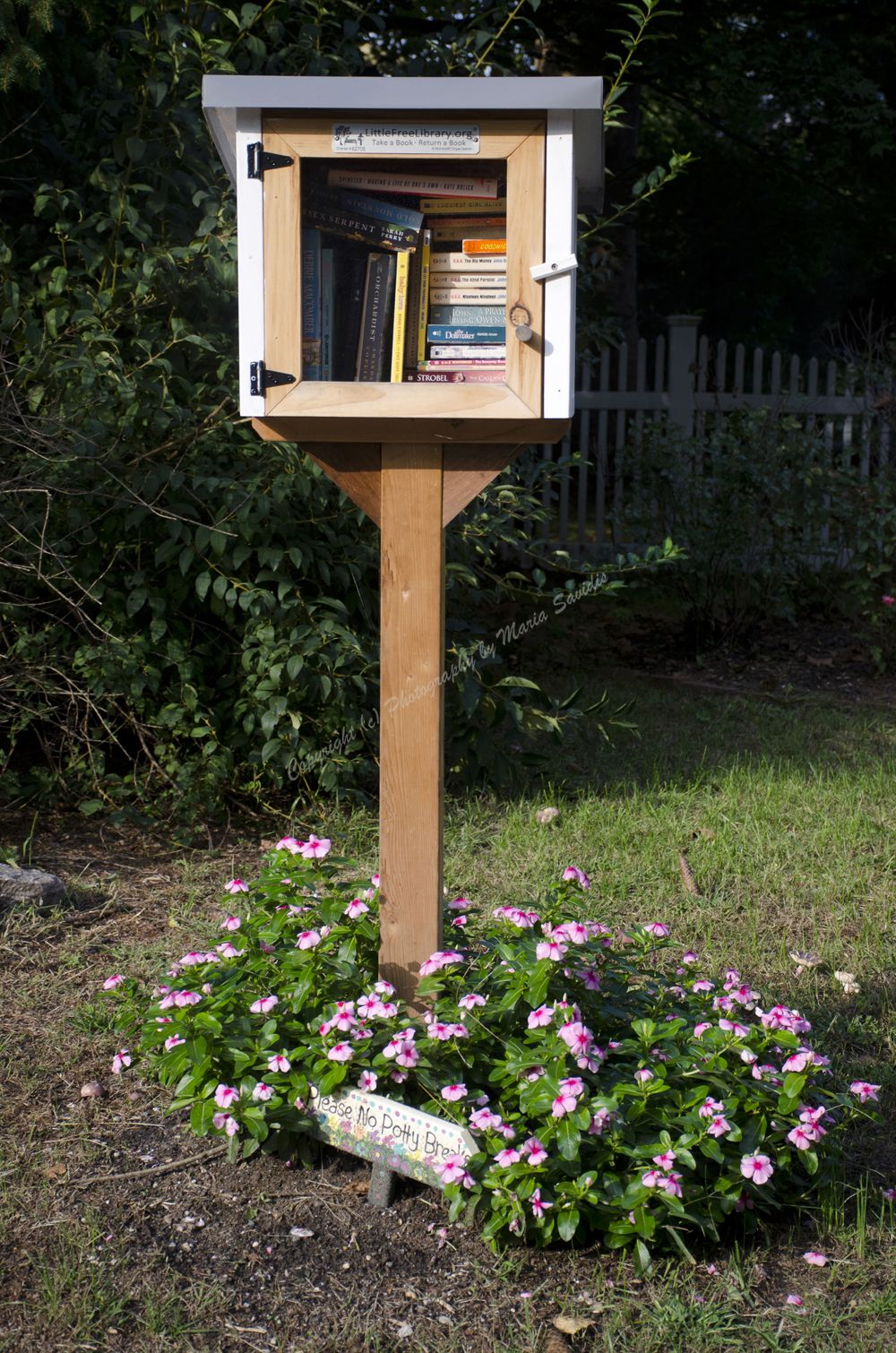 Little Free Library With Flowers Little Free Libraries Free Library Photography Organizations