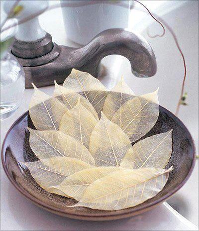 leaf-soap