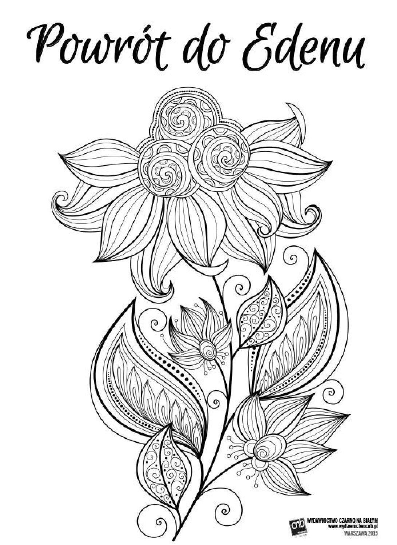 Powrot Do Edenu Antystresowe Kolorowanki Dla Doroslych Coloring Books Pattern Art Coloring Pages