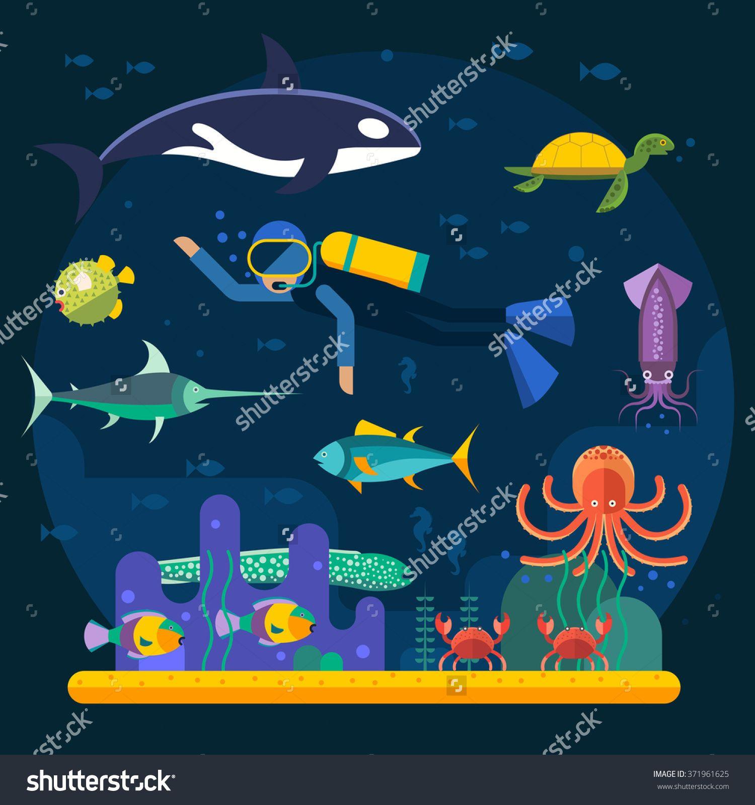 Scuba Diving With Fishes And Coral Reef Vector Illustration. Diver And Fishes Vector Illustration. Diving Travel Poster. Vacation Time, Activity Diving Man And Travel Concept - 371961625 : Shutterstock