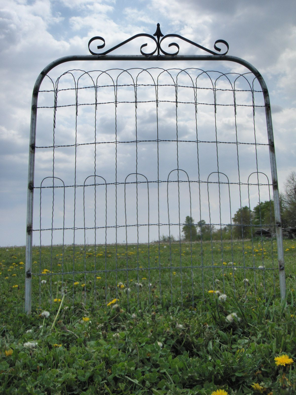 36 Tall X 36 Wide Wire Fence Garden Gate This Ornamental Wire Gate Is Made  With 36 Tall Fence.