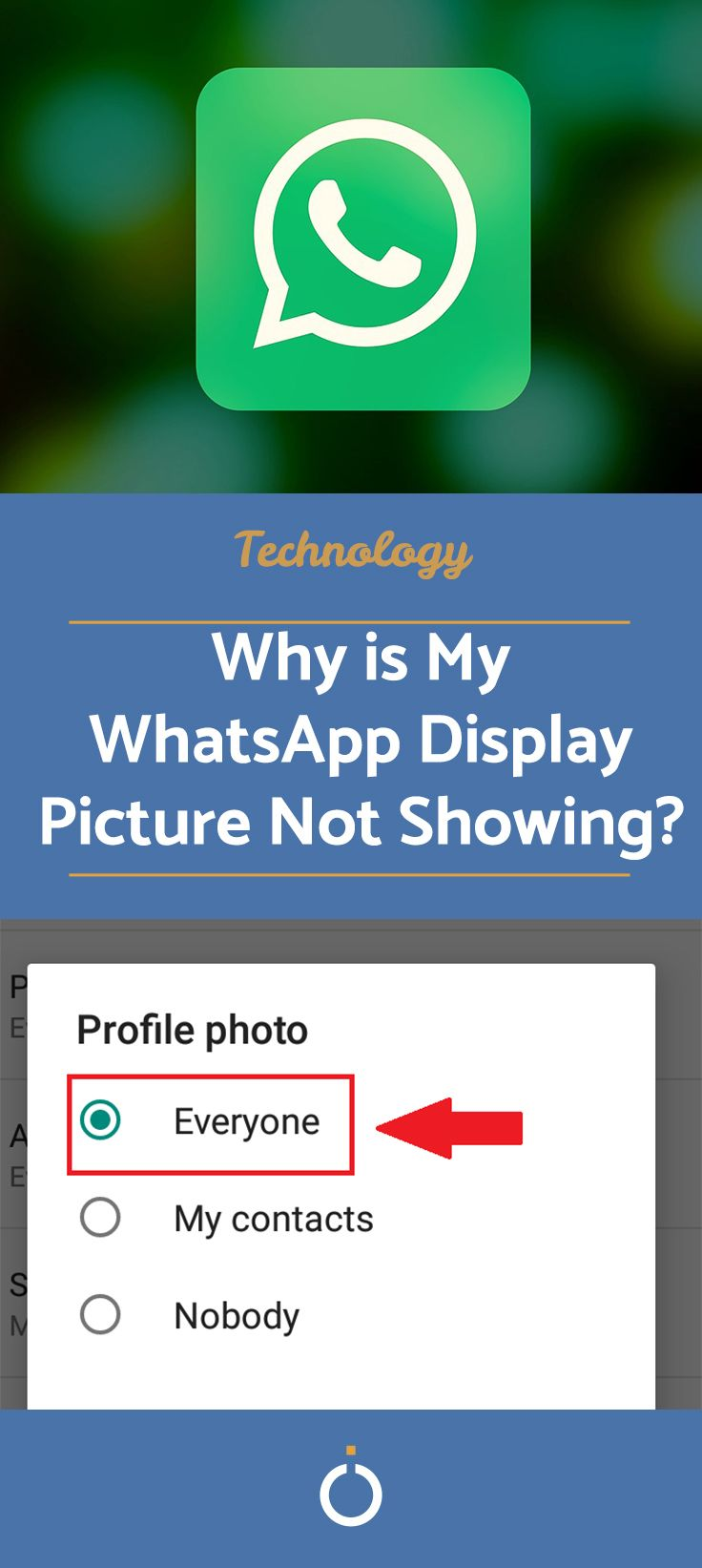 Why is My WhatsApp Display Picture Not Showing?   Picture