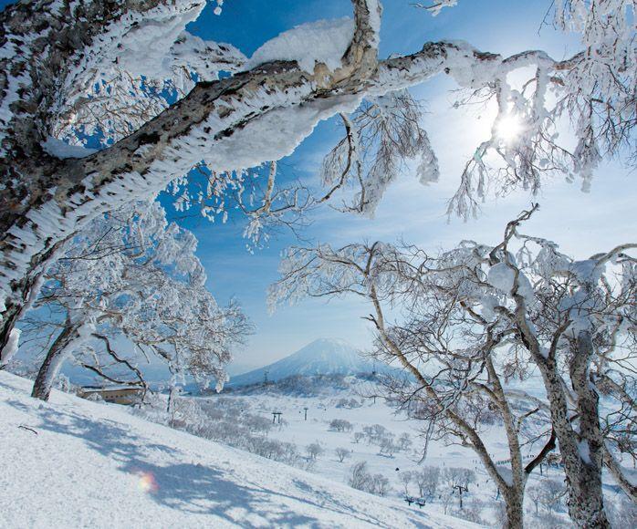 Niseko Village, Japan   DESITINATION JAPAN   Japan skiing ...