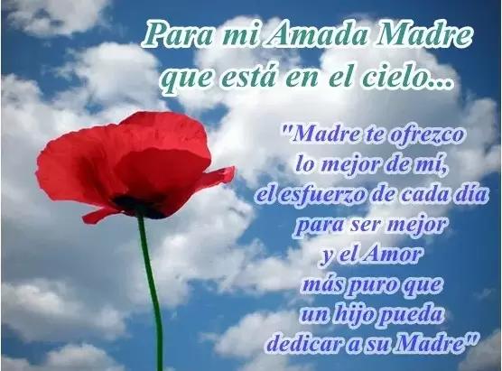 Imágenes De Duelo A Una Madre Que Ha Fallecido Oracion Para Mi Madre Frases Para Madres Fallecidas Frases Para Madres
