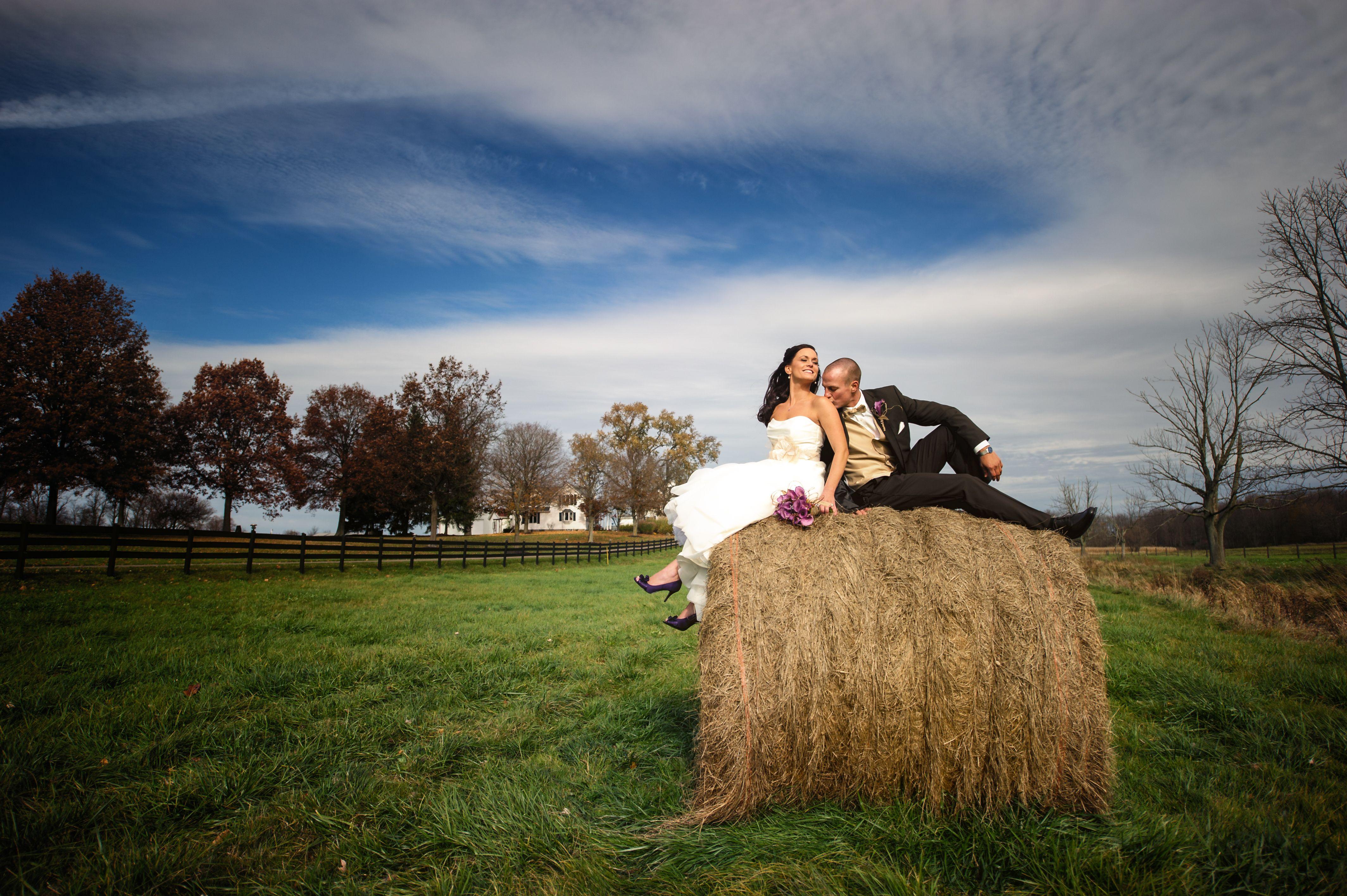 wedding picture locations akron ohio%0A Farm wedding  Brookside Farms  Louisville Ohio Wedding  bride and groom  portraits  Barn