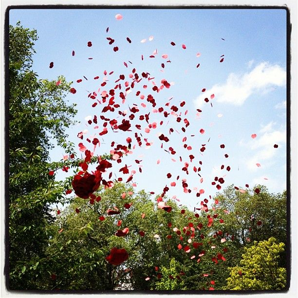 Yesterday in London's Green Park the Queen unveiled a new memorial to the servicemen of the RAF's Bomber Command who served during World War II. As part of the ceremony, the Lancaster Bomber scattered 82,000 poppies from the sky in tribute to the 55,573 airmen who lost their lives  Photo by equentin • Instagram