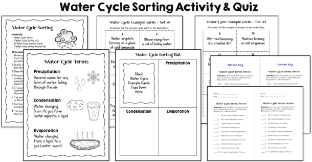 water cycle sorting activity geography teaching science teaching resources scientific reports. Black Bedroom Furniture Sets. Home Design Ideas