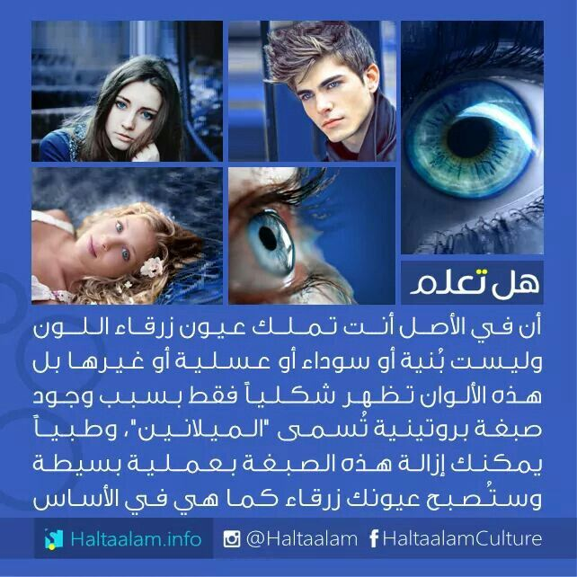 Pin By Ikram On معلومات Really Good Quotes Life Facts Funny Joke Quote