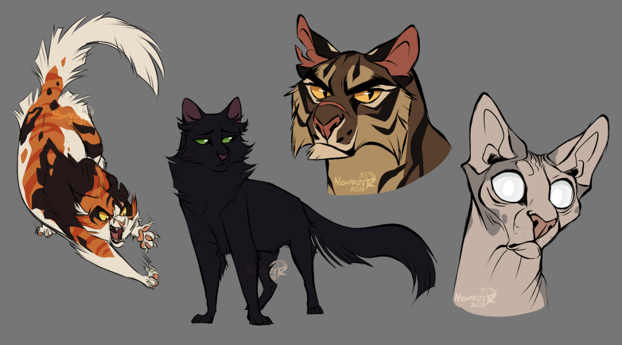 I'm trying to get better at character design and silhouettes so I drew some Warrior Cats for practice.