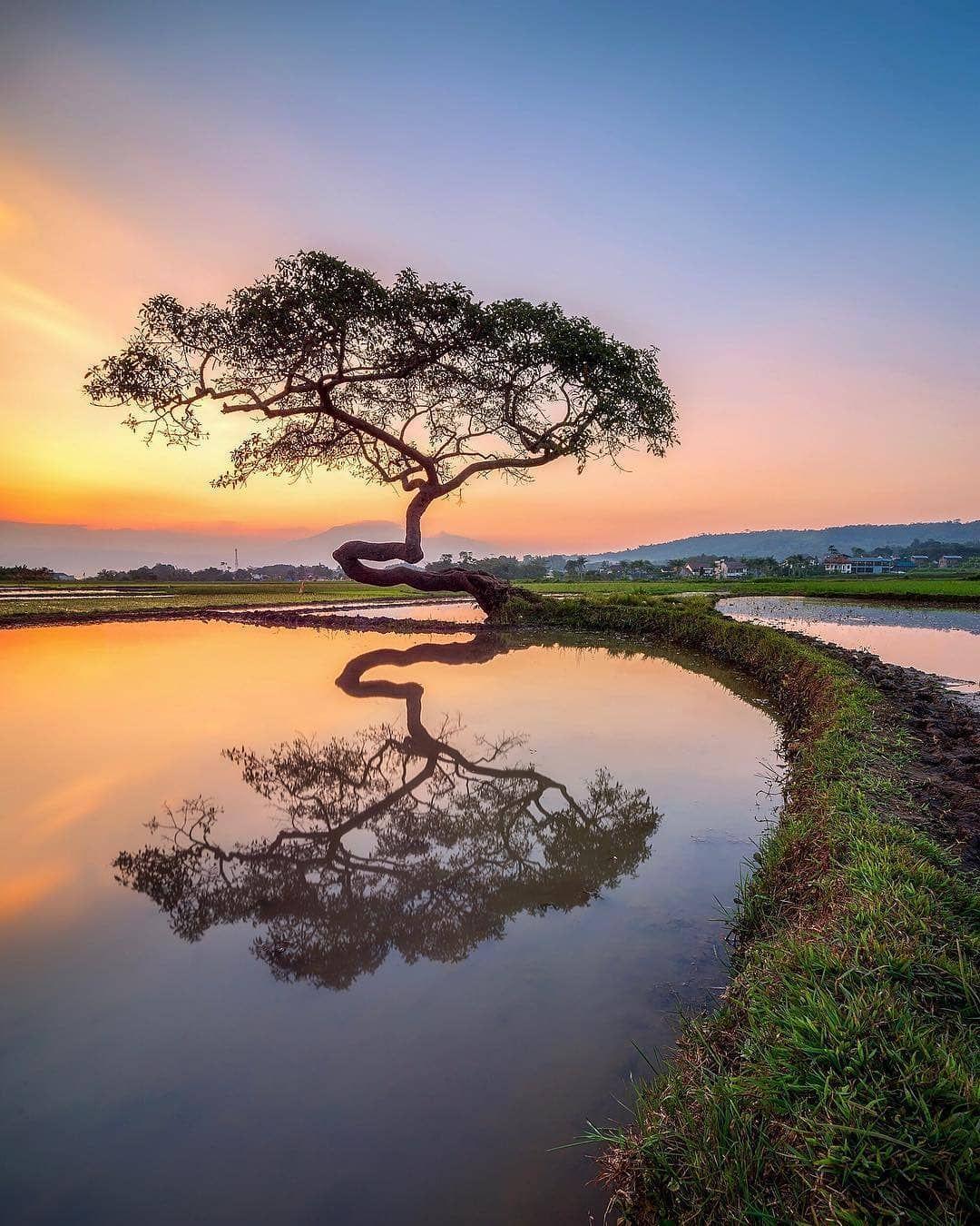 Awesome Photo Trip On Instagram Salatiga Indonesia Paysage Paysage De Reve Photos Paysage