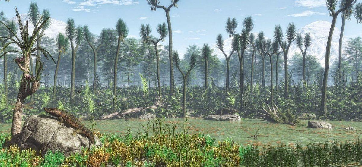 Periodo Carbonífero Características Geología Clima Flora Y Fauna Animales De La Prehistoria Fauna Registro Fosil
