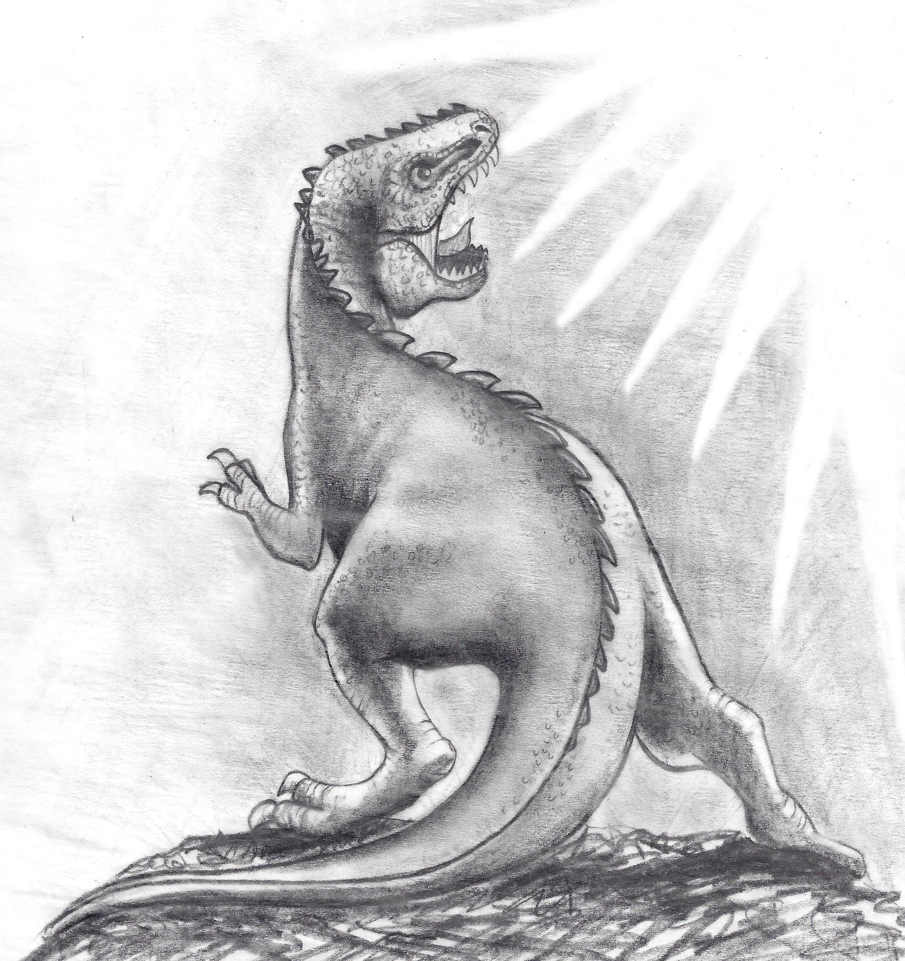 image result for pencil drawing dinosaur pencil drawings