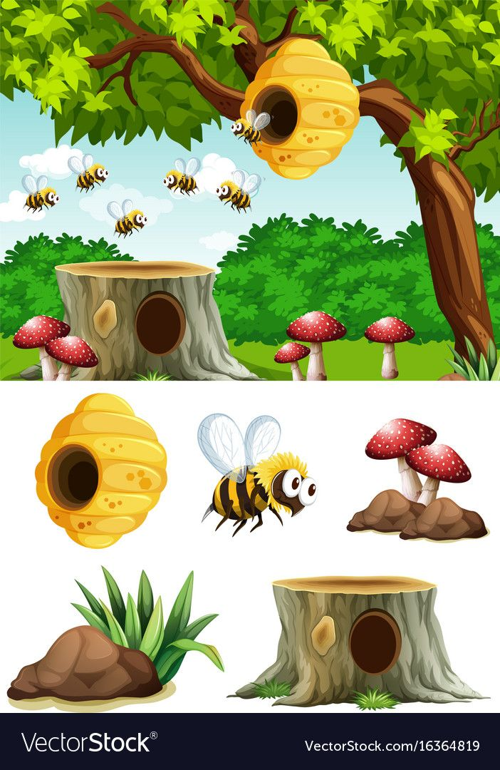 Bees Flying Around Beehive In Park Vector Image On Vectorstock Art Drawings For Kids Animal Art Projects Bee Hive