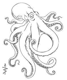 Photo of 1000+ Bilder über Dibujo auf Pinterest | Octopus Drawing, Octopus …, #dibujo #drawing #Ima …