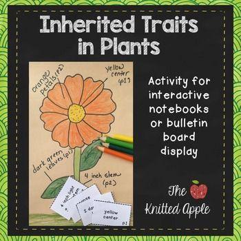 Inherited Traits In Plants Inherited Traits 1st Grade Science Third Grade Science Inherited traits worksheet 5th grade