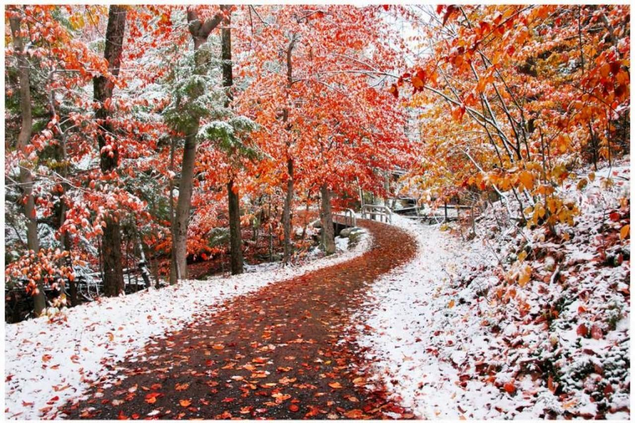 4 Must Have Items For Fall/Winter | Features | #HCValdosta | Pinterest | Autumn, Winter and ...