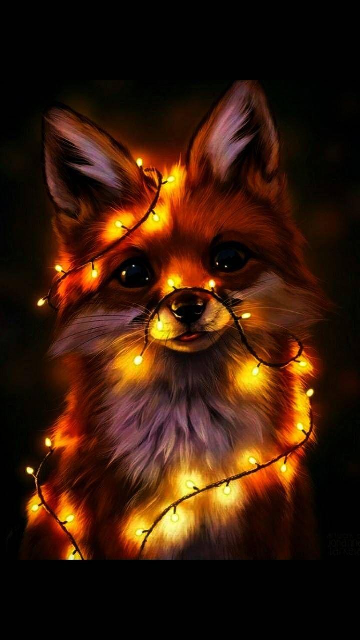 Fox light wallpaper by Blue_Phoenix_175 - 89ca - Free on ZEDGE™