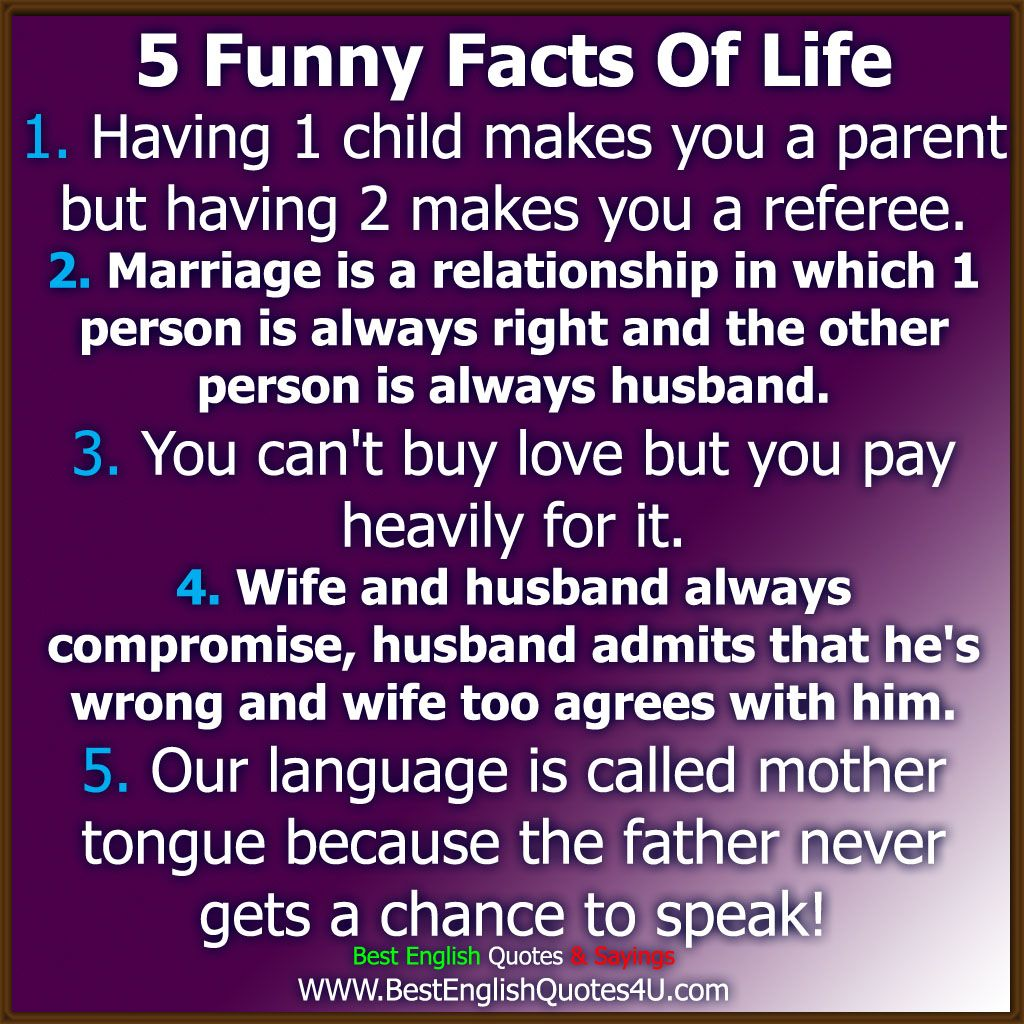 English Funny Quotes About Life