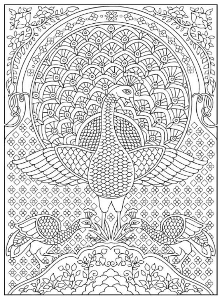 Creative Haven Peacock Designs Coloring Book Dover