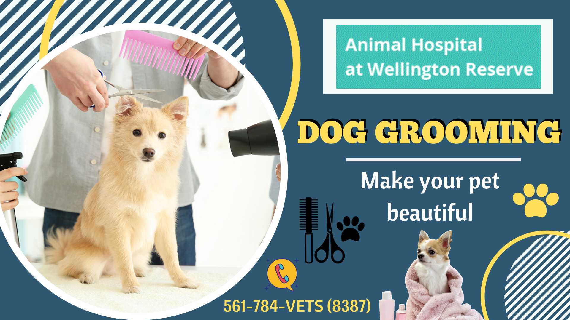 FullTime Pet Grooming Services Pet clinic, Animal