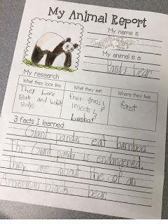 K-4 Animal Research Projects | Top Teachers Smorgasboard