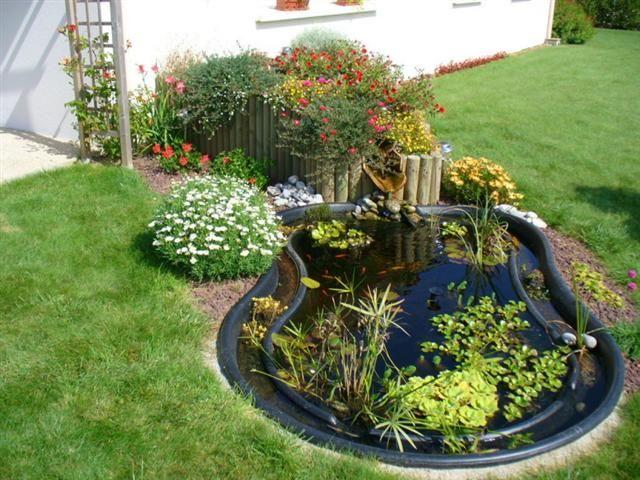 plantes pour bassins extérieurs   Oregistro.com = Bache Pour Bassin ...