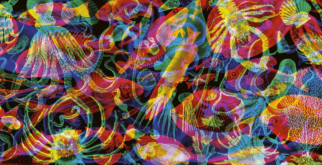 Psychedelic Nature Art Carnovskys Psychedelic Rgb Wallpaper