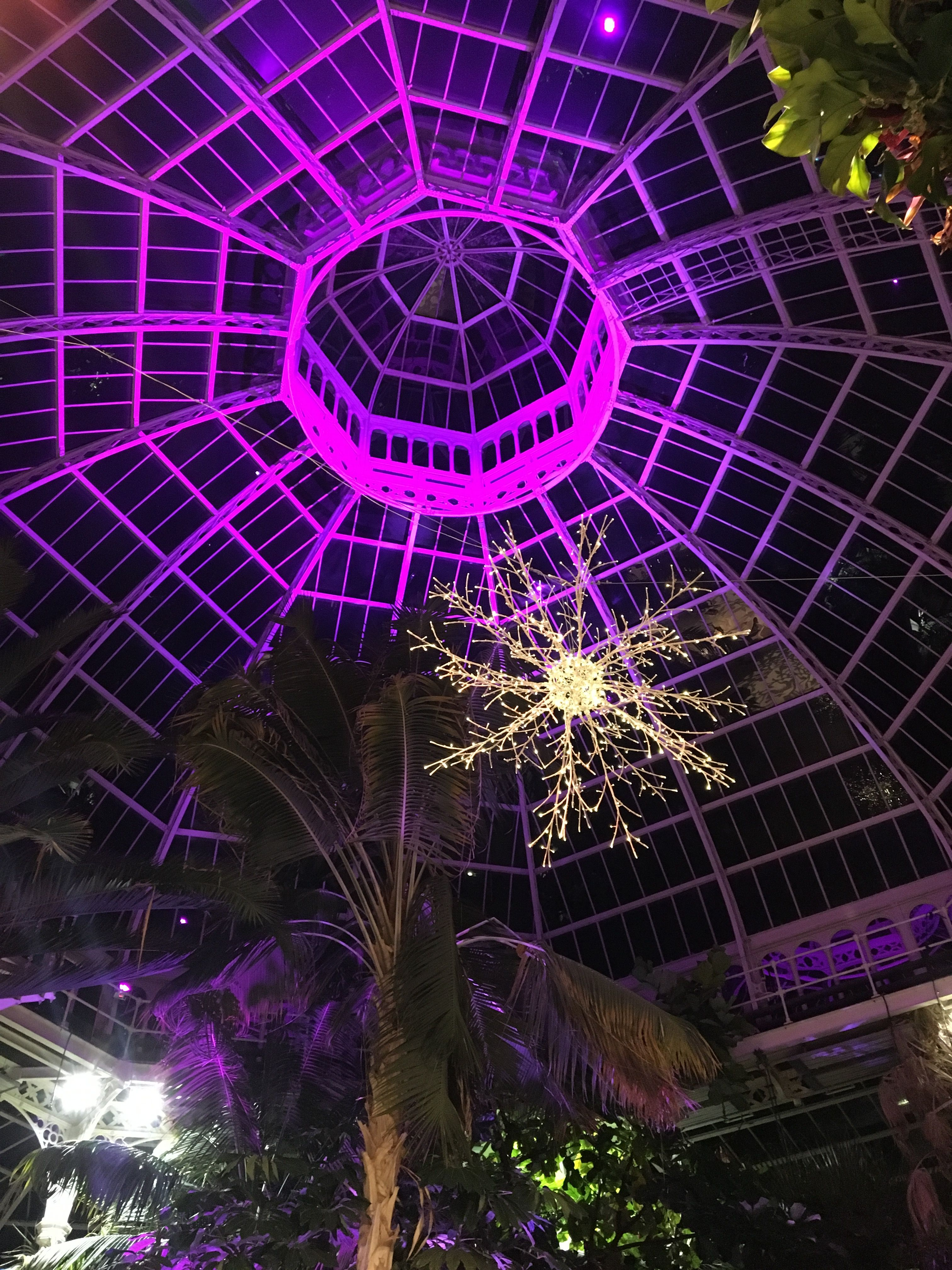 Dome Wedding Lighting At Palm House Liverpool Our