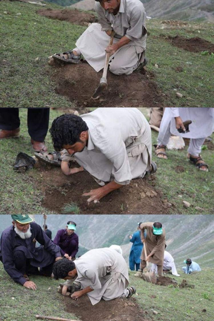 Pin On Insaf Tv Kamyab Jawan Tiger Force Esaas