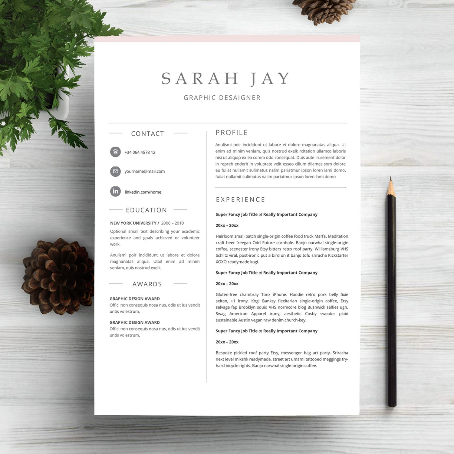 Professional Resume Template Clean Sleek Minimal  Cv