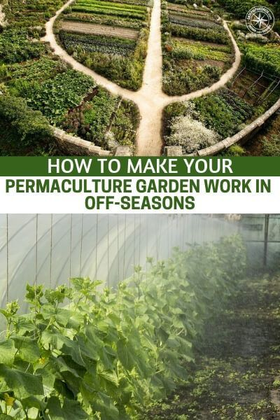 to Make Your Permaculture Garden Work in Off-Seasons How to Make Your Permaculture Garden Work in Off-Seasons - This article is all about just that subject. How to make your permaculture garden work in the off seasons, is going to make you think. It might turn out you are only getting 70% out of your permaculture garden.How to Make Your Pe...