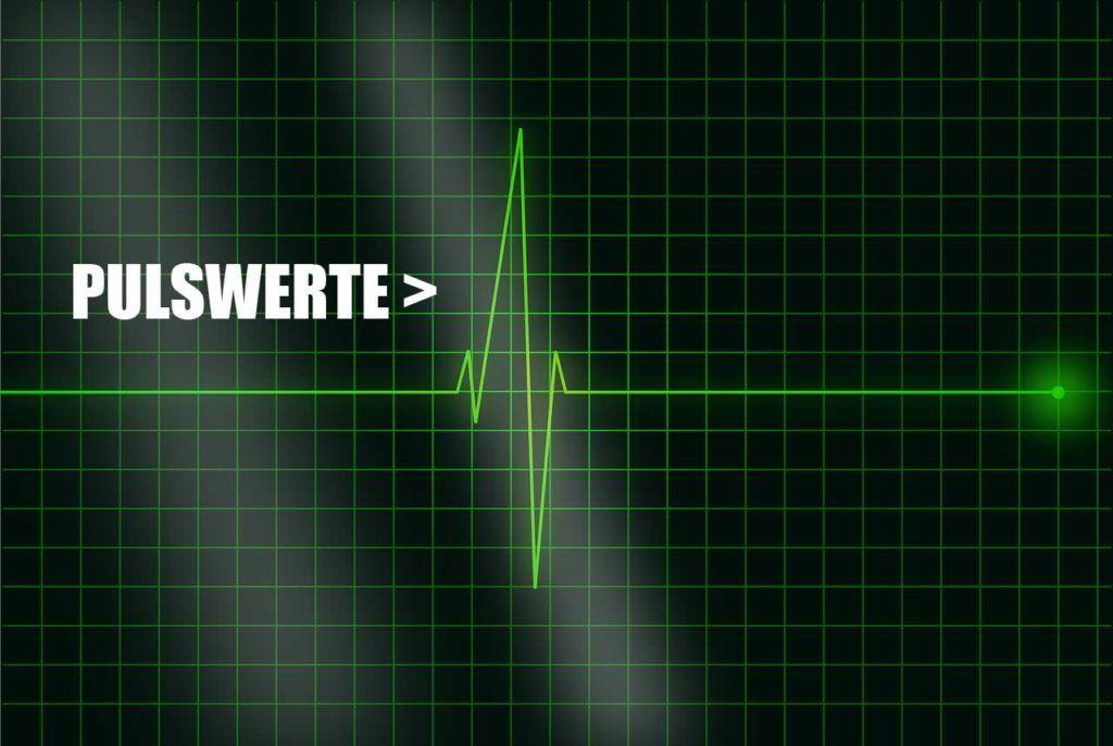 Pulswerte richtig bewerten - Indikator für Gesundheit des..