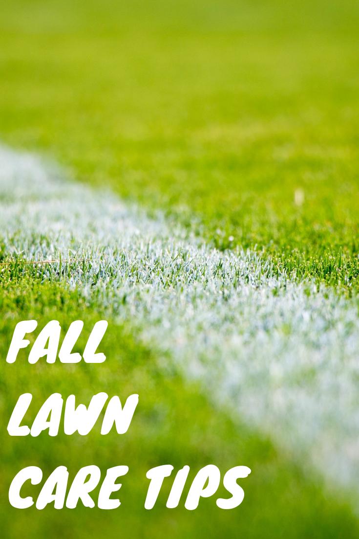 Fall Lawn Care Tips I Fall Lawn Care Lawn Care Tips Lawn Care
