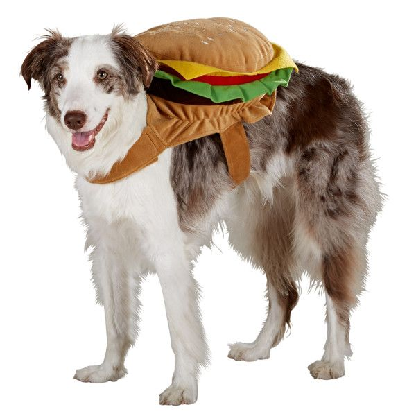 Pass The Ketchup For This Fun Top Paw Hamburger Costume Petsmart