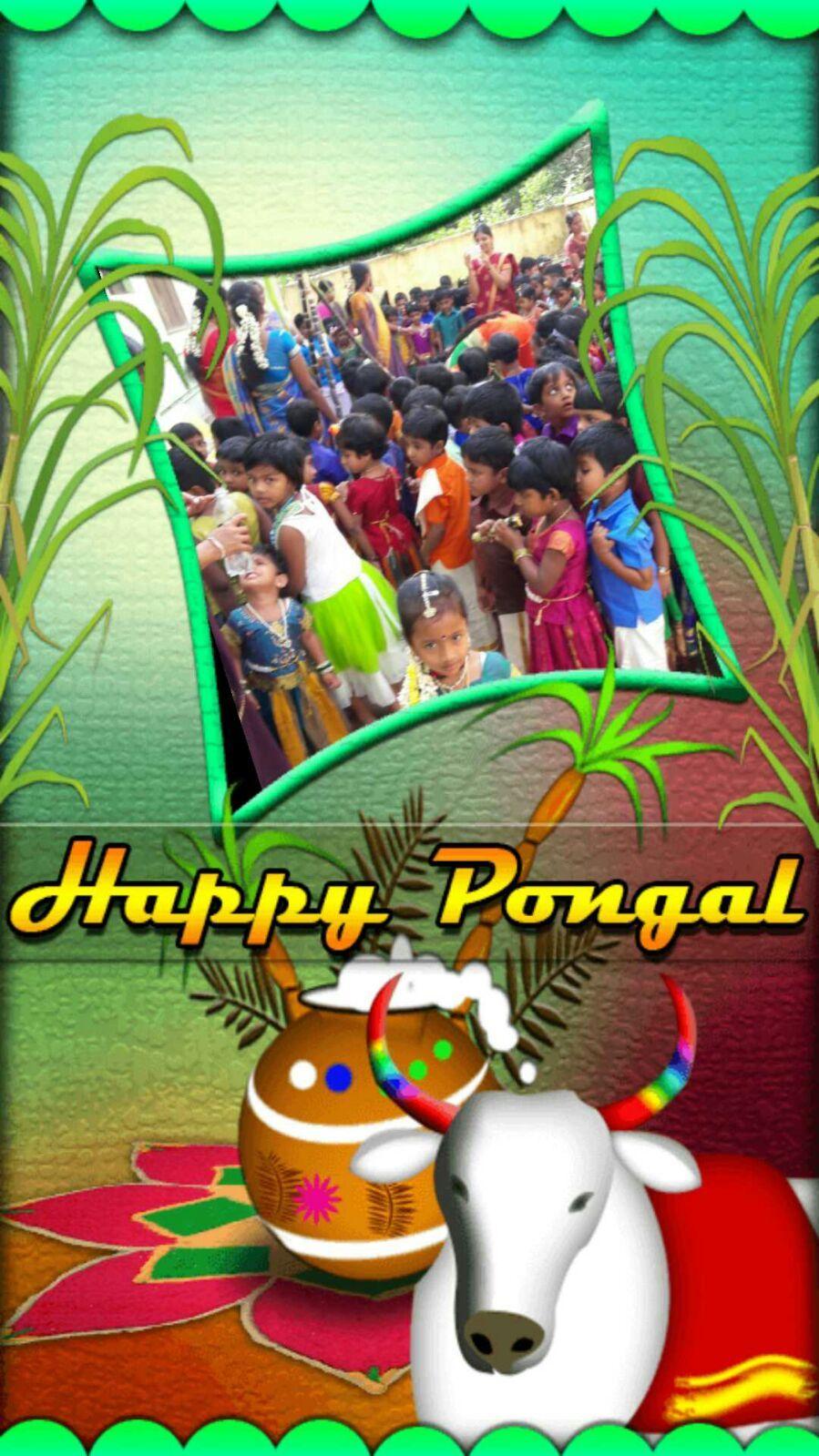 Pongal celebration in Newtunkids Mannargudi   Newtunkids