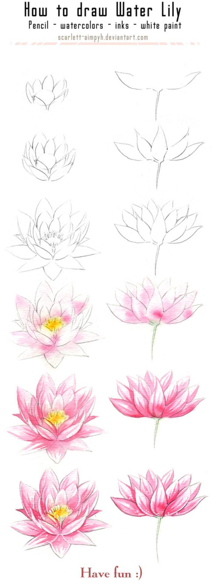cómo dibujar y pintar waterlily por scarlettaimpyh design