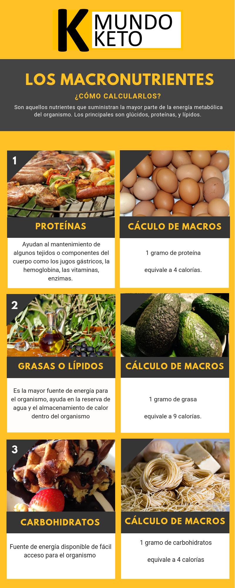 Cómo Calcular Macronutrientes - Dieta cetogenica, Dieta..