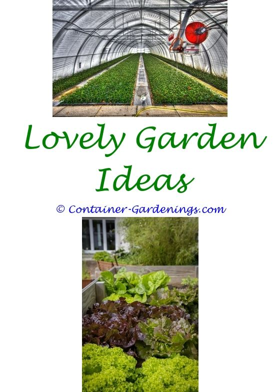 Vertical Vegetable Garden Design Ideas   Garden Basket Auction Ideas.hobbit Garden  Ideas Community Garden