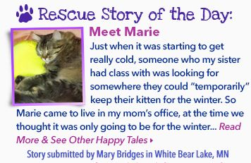 Rescue Story of the Day!