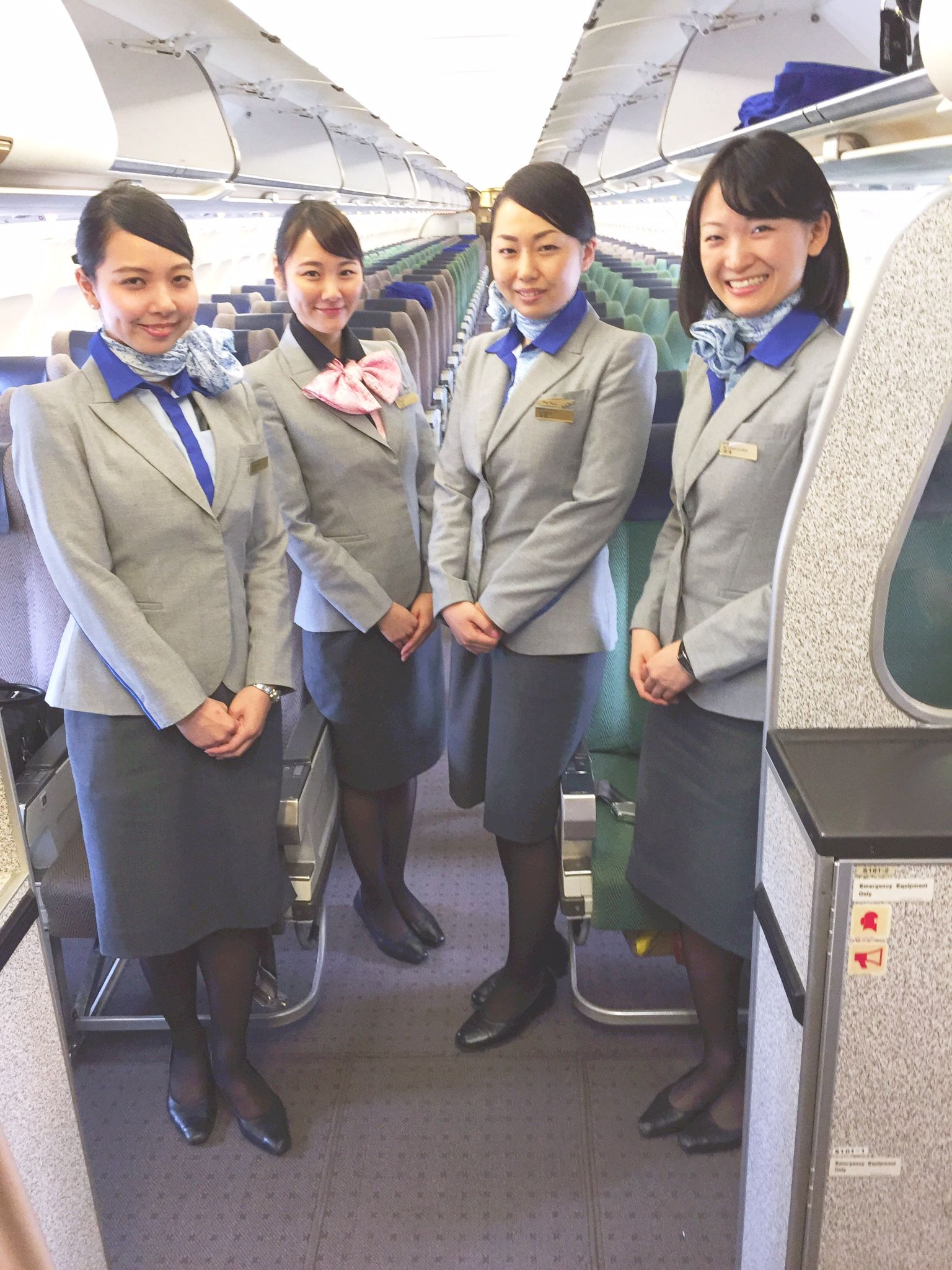 Image result for ANA All Nippon Airways cabin crew uniform